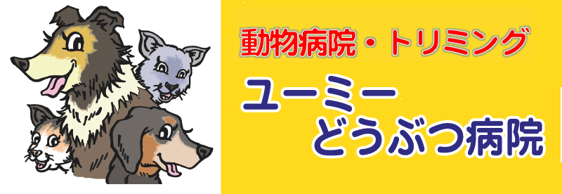 ユーミーどうぶつ病院|佐倉市・臼井・ユーカリが丘の動物病院